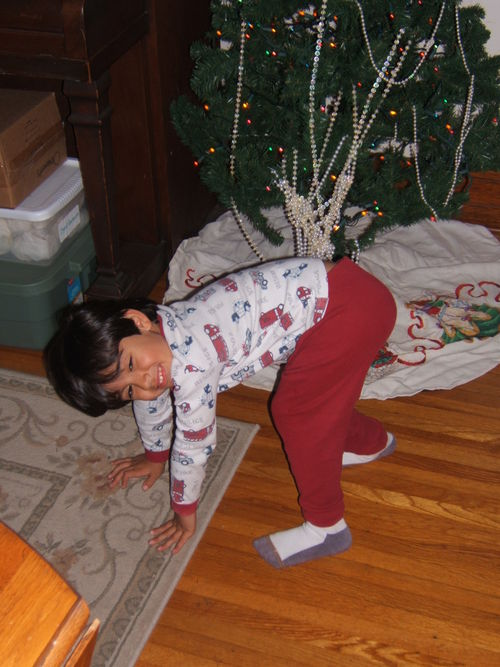 Christmas 2008 056