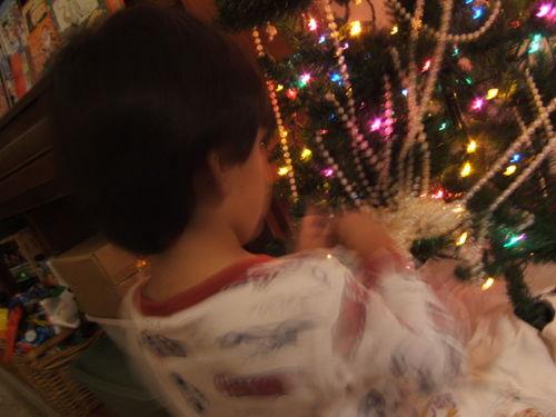 Christmas 2008 082