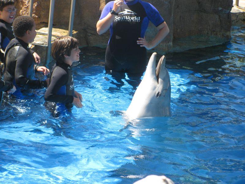 Del Mar Fair 2009 148