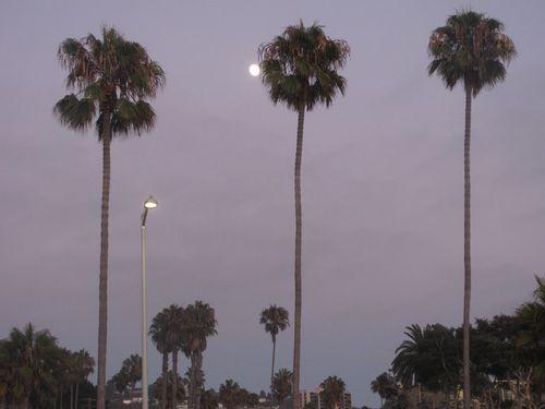 2010 August Beach 189